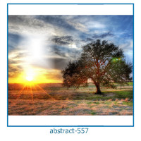 abstract photo frames 557