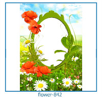 flower photo frames 842